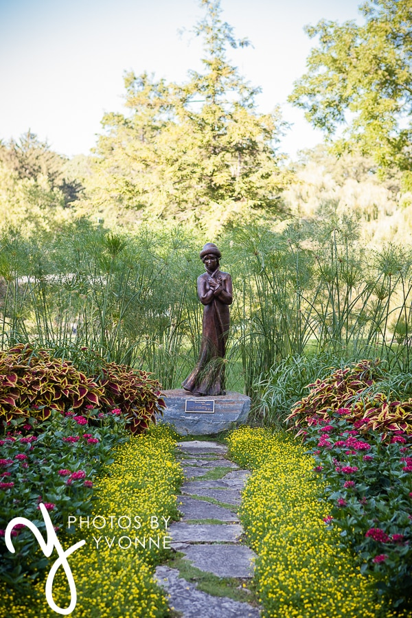 Toledo Event Photography, Schedel Gardens, Schedello 136