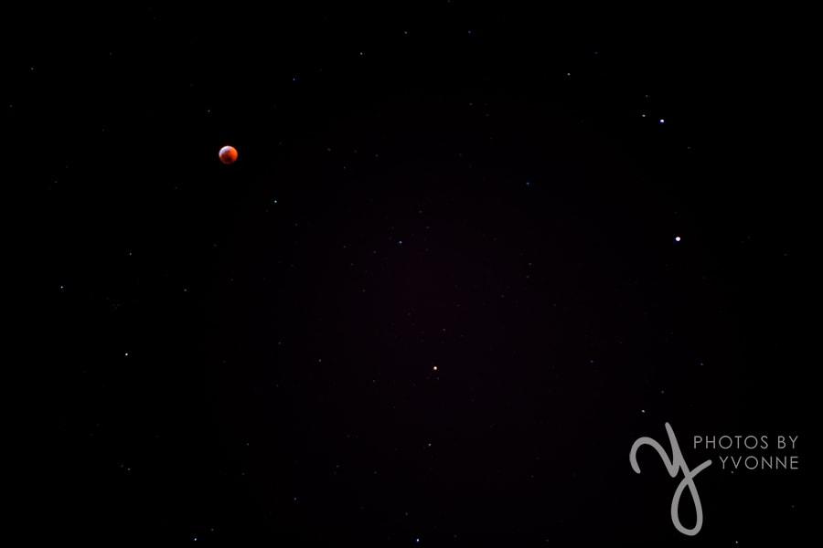 Lunar Eclipse Super Blood Wolf Moon