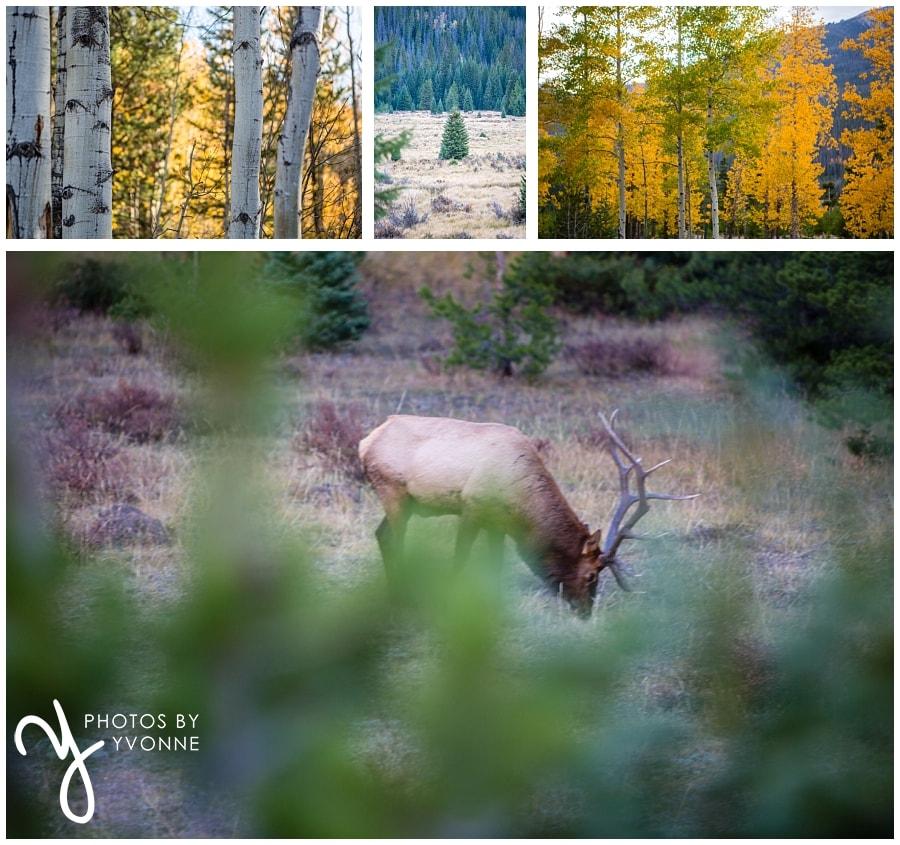 Rocky Mountains Vacation Photos